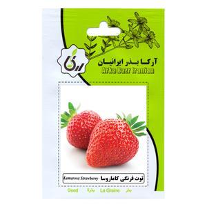 بذر توت فرنگی کاماروسا آرکا بذر ایرانیان کد ARK-143