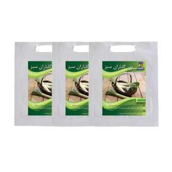 مجموعه بذر تره بومی گلباران سبز بسته 3 عددی