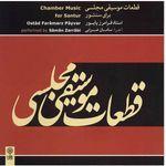 آلبوم موسیقی قطعات موسیقی مجلسی برای سنتور - فرامرز پایور thumb