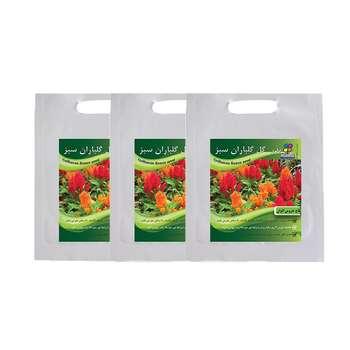مجموعه بذر گل تاج خروس گلباران سبز بسته 3 عددی