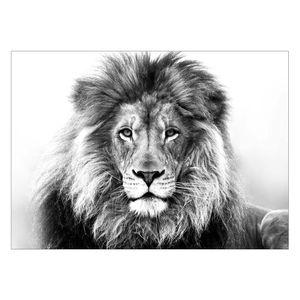 تابلو شاسی ونسونی طرح Lion Gazing سایز 50 × 70