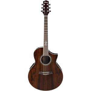 گیتار آکوستیک آیبانز مدل EW20WNE NT