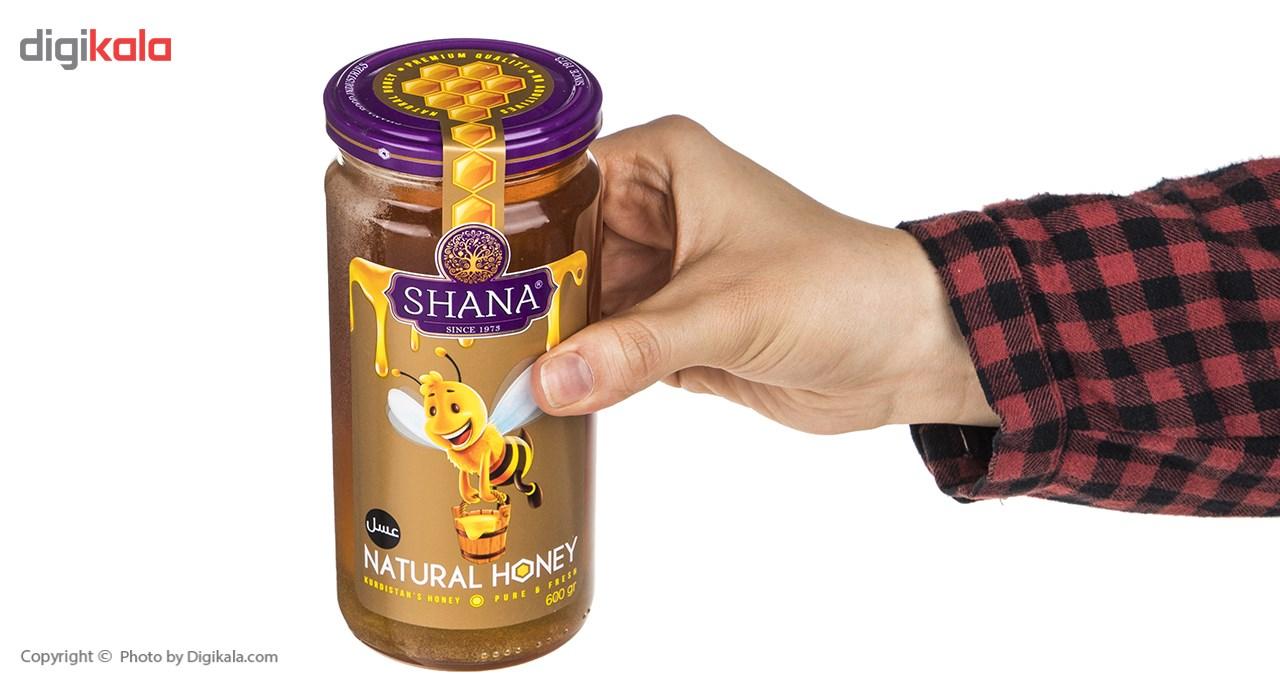 عسل شانا - 570 گرم main 1 2