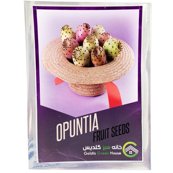 بذر کاکتوس میوه اپونتیا خانه سبز گلدیس کد 17