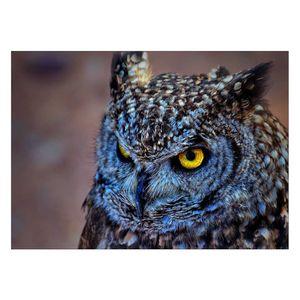 تابلو شاسی ونسونی طرح Blue Eagle Owl  سایز 30x40 سانتی متر