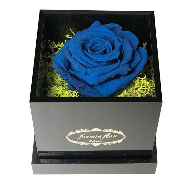 جعبه گل ماندگار فورمه فلور مدل MB سایز متوسط