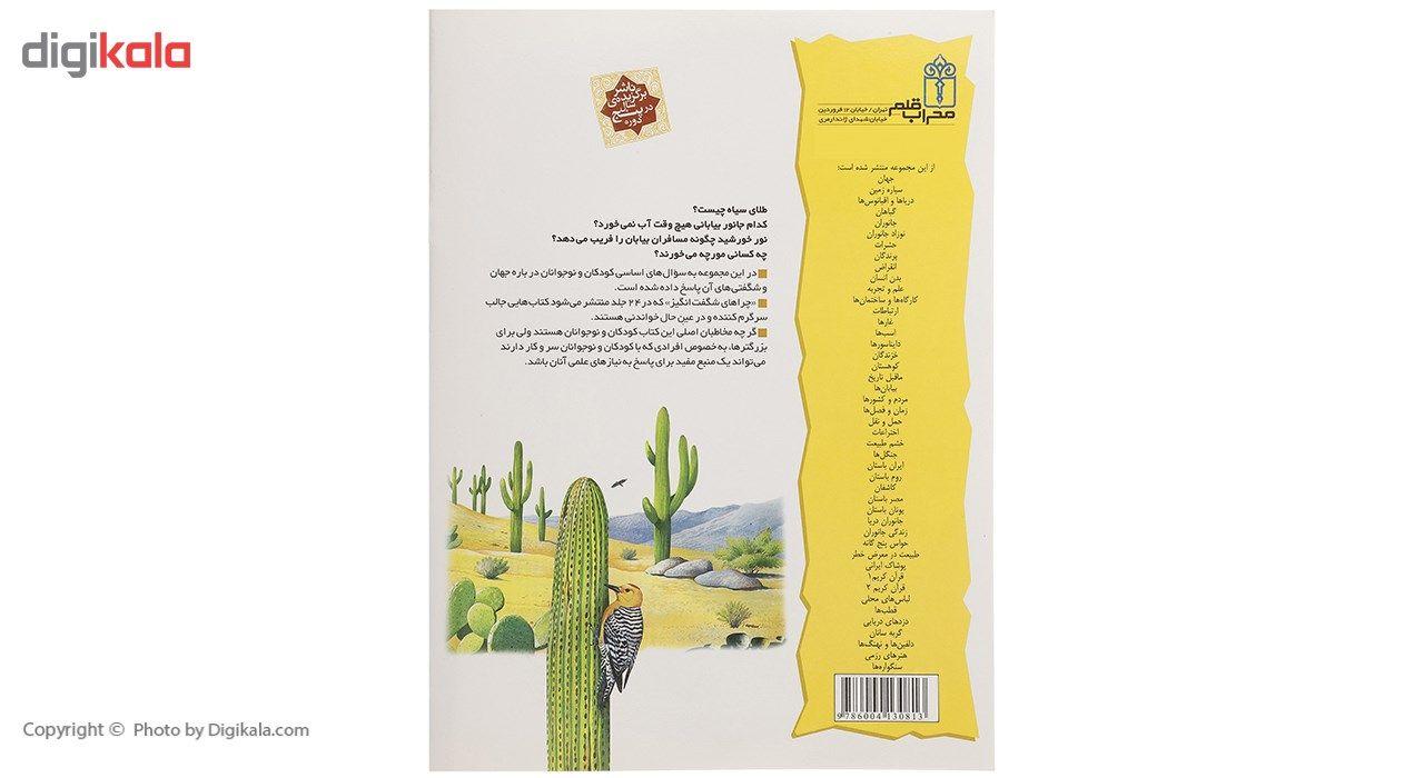 pictures of arizona cactus plants