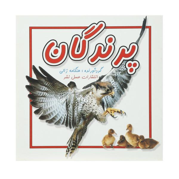 کتاب پرندگان اثر هنگامه ژالی
