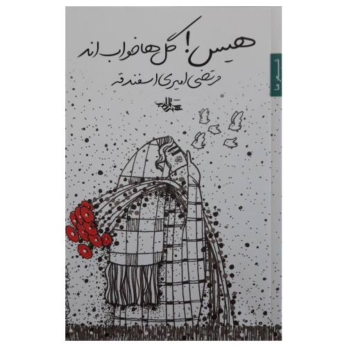 کتاب هیس گلها خواب اند اثر مرتضی امیری اسفندقه