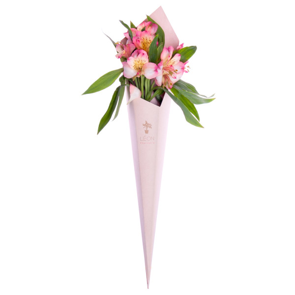 شاخه گل آلسترومریا لئون  رنگ صورتی