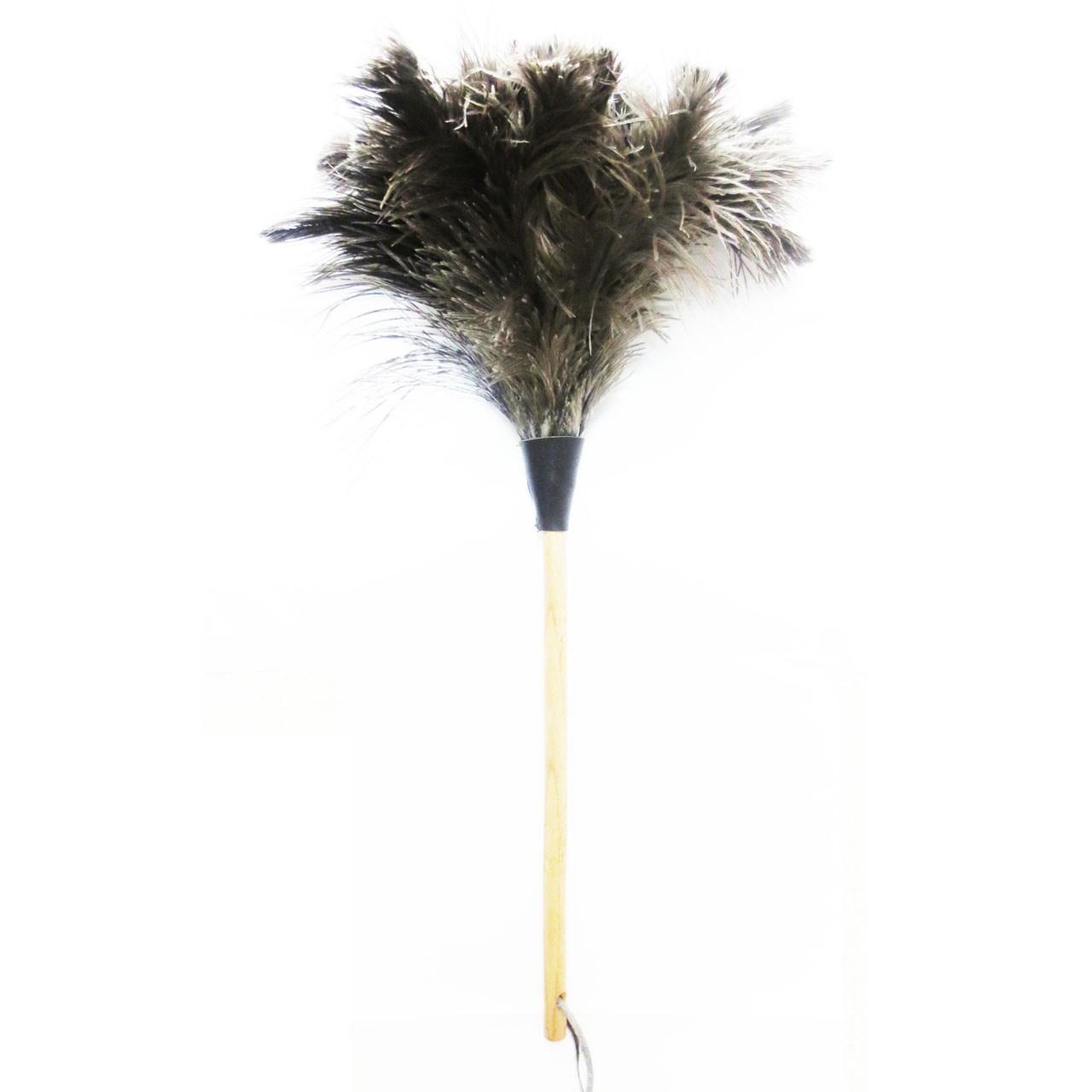 گردگیر  آلین مدل Ostrich Feather 3