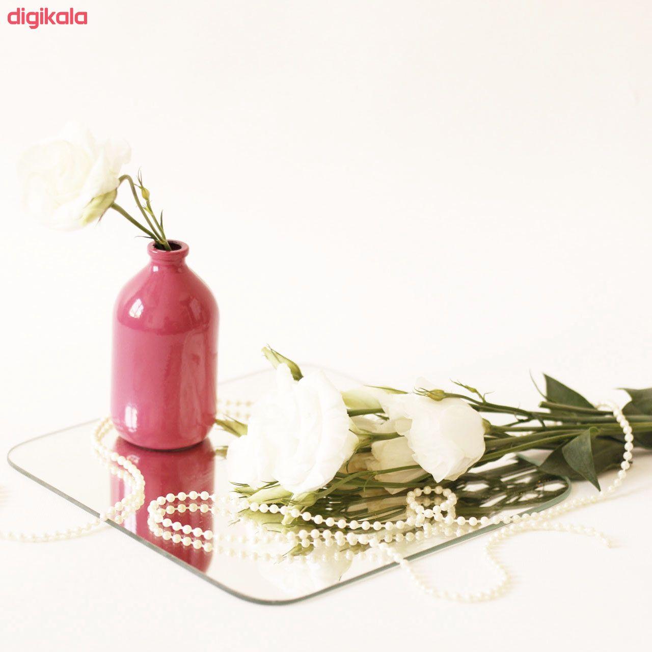 گلدان مدل N20 کد NG10 main 1 6