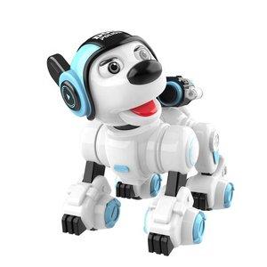 ربات کنترلی طرح سگ مدل کریزون کد 1901