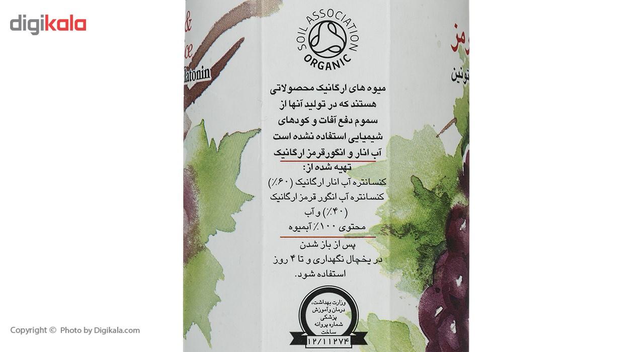 آب انار و انگور قرمز شادلی حجم 1 لیتر main 1 4