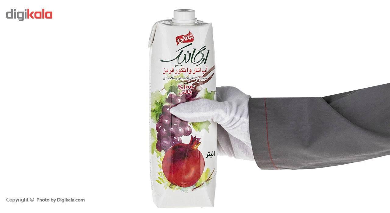 آب انار و انگور قرمز شادلی حجم 1 لیتر main 1 5