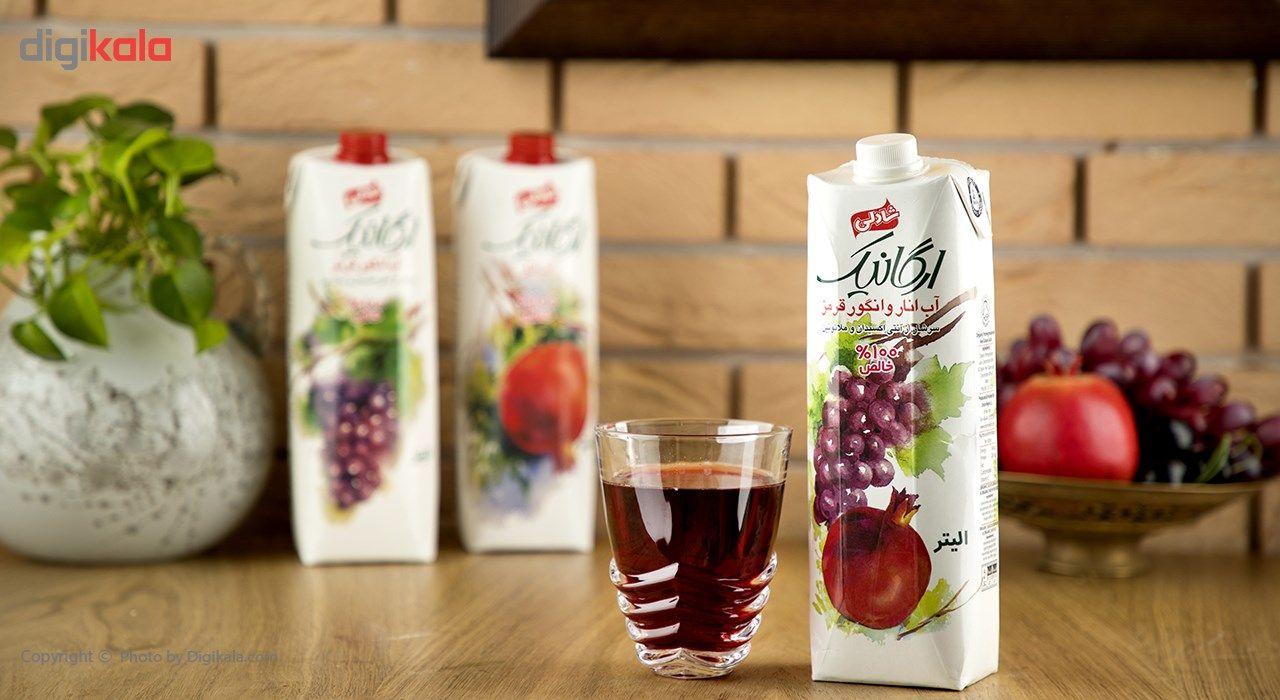 آب انار و انگور قرمز شادلی حجم 1 لیتر main 1 1