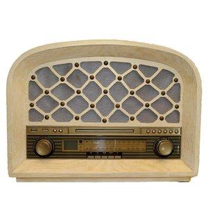 رادیو تریگر اس اند اس مدل DM16