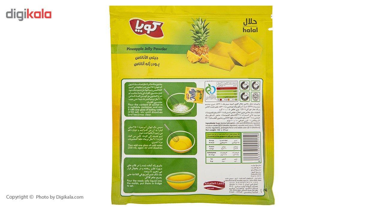 پودر ژله آناناس کوپا مقدار 100 گرم main 1 2