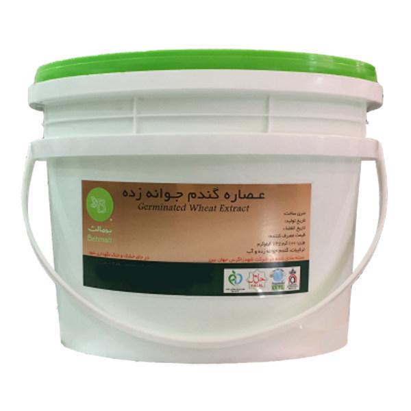عصاره گندم جوانه زده به مالت - 4 کیلوگرم