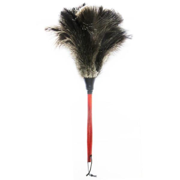 گردگیر آلین مدل Ostrich Feather 5