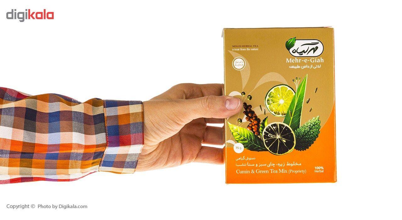 دمنوش گیاهی مخلوط زیره، چای سبز و سنا مهرگیاه مقدار 75 گرم main 1 8