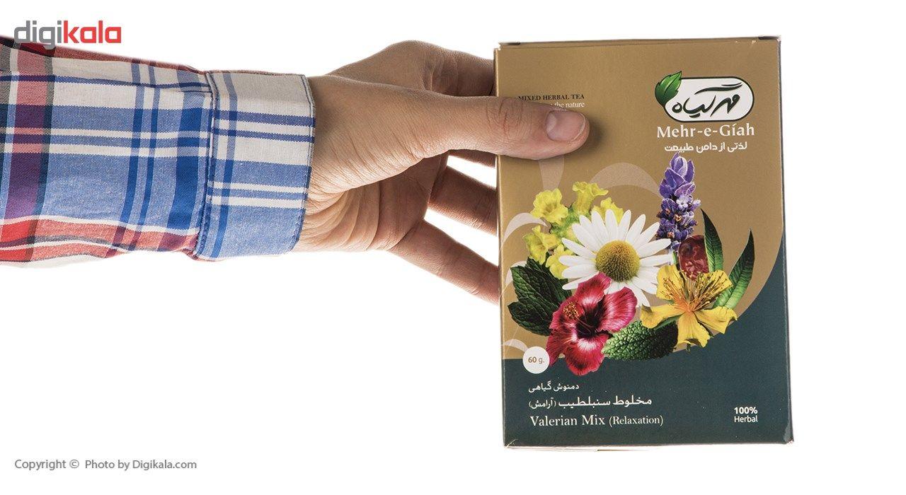 دمنوش گیاهی مخلوط سنبلطیب مهرگیاه مقدار 60 گرم main 1 8