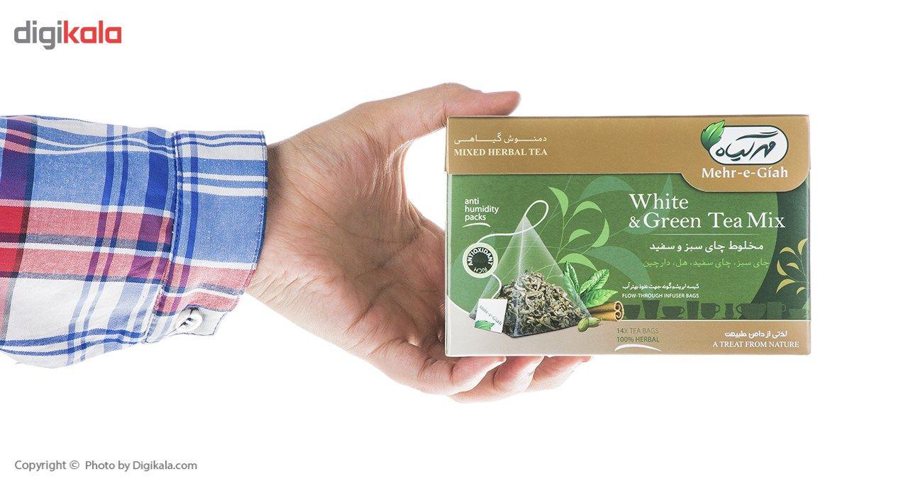 دمنوش گیاهی چای سبز و سفید مهرگیاه بسته 14 عددی main 1 8