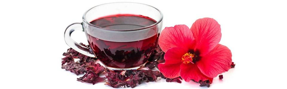 دمنوش گیاهی چای ترش مهرگیاه بسته 14 عددی main 1 10