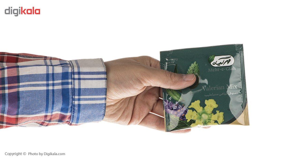 دمنوش گیاهی سنبلطیب مهرگیاه بسته 14 عددی main 1 12