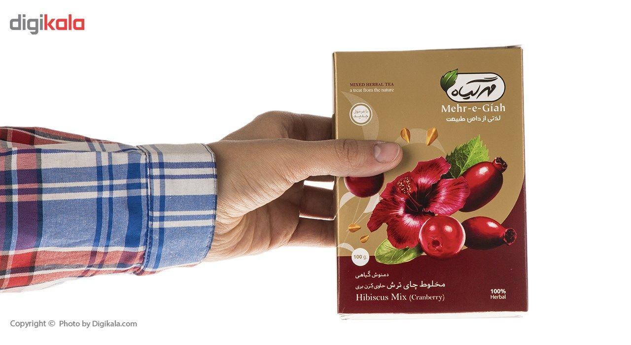 دمنوش گیاهی مخلوط چای ترش حاوی کرن بری مهرگیاه مقدار 100 گرم main 1 9