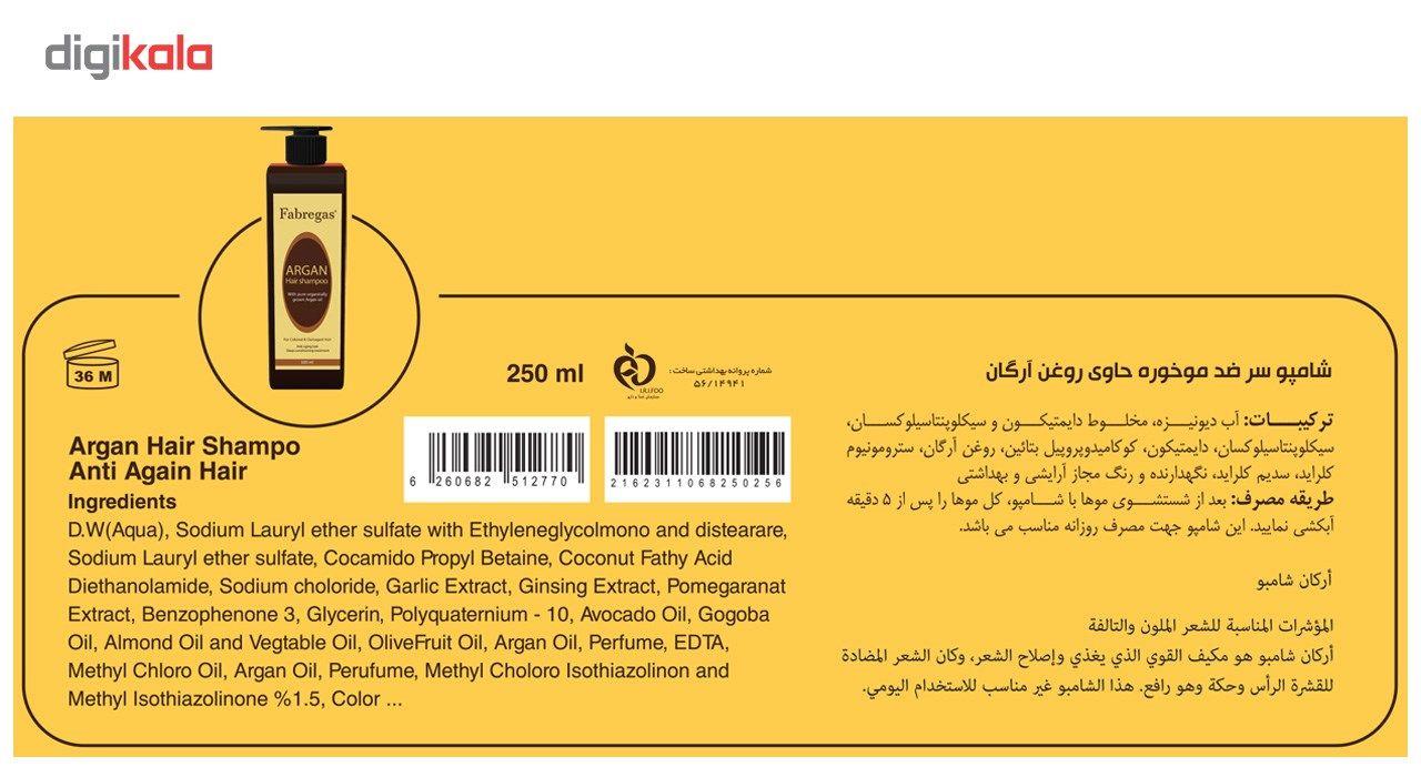 پک ترمیم کننده موی فابریگاس مدل Argan مجموعه 5 عددی main 1 6