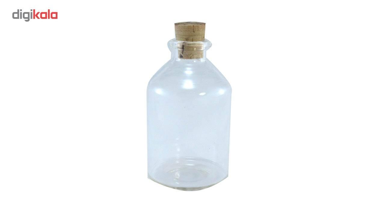 بطری دکوری کوه شاپ کد TP-G4466 بسته 5 عددی main 1 6