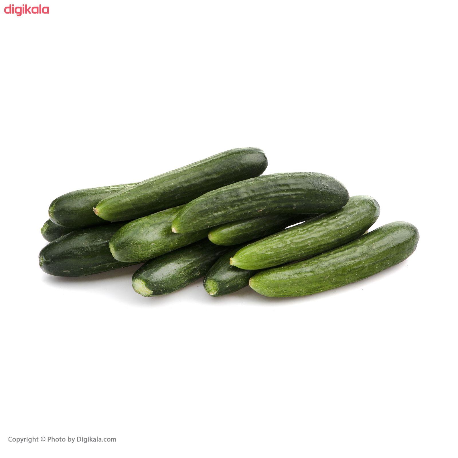 خیار میوری - 1 کیلوگرم main 1 2