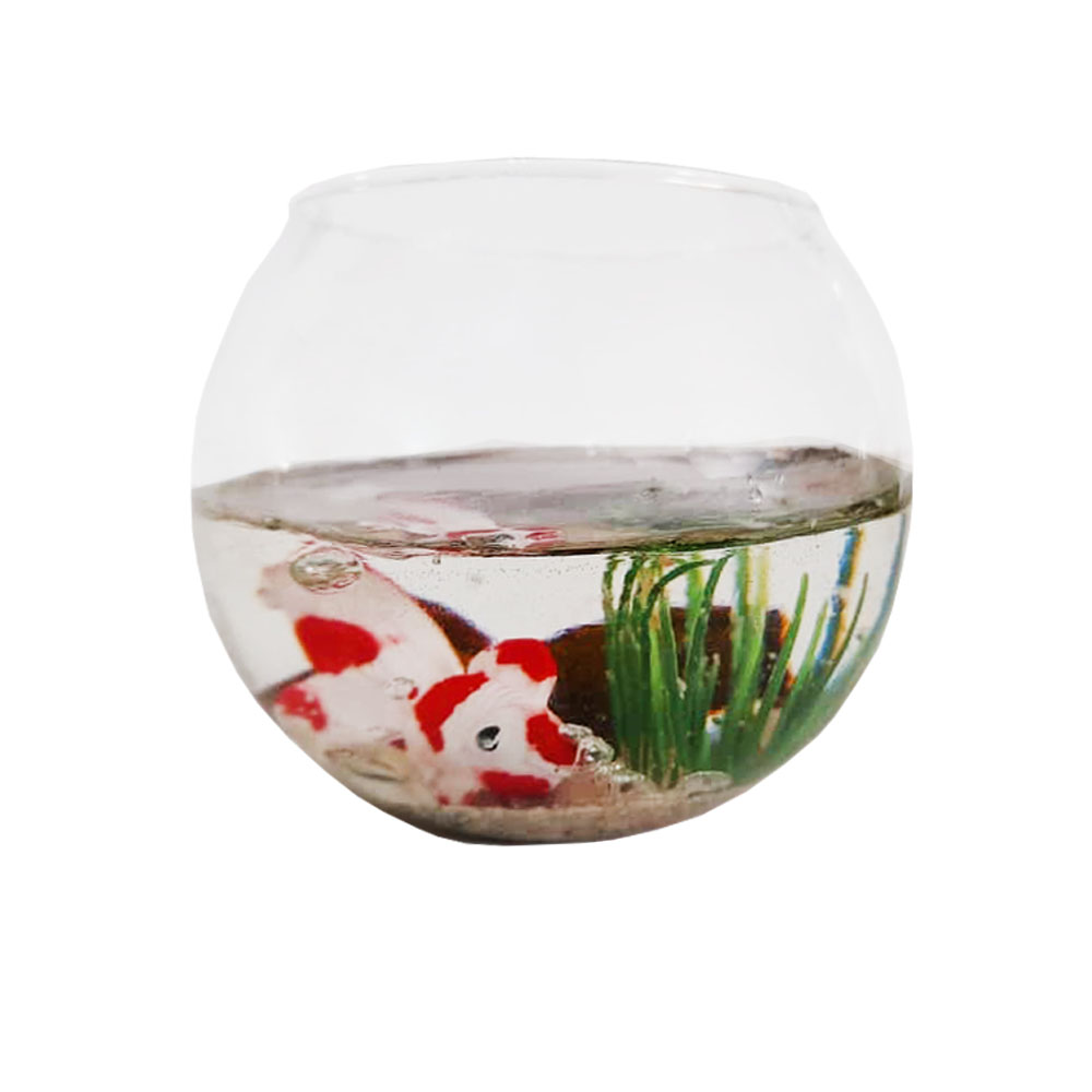 تنگ ماهی مدل سرو کد 01
