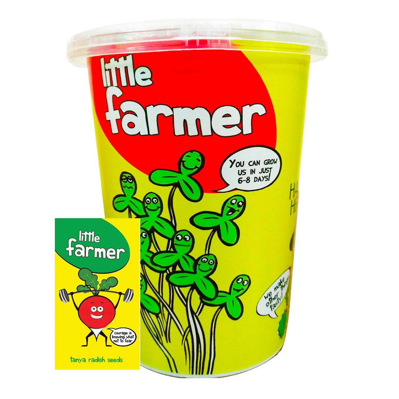 بذر  آماده برای  کشت کشاورز کوچولو مدل ترب همراه با گلدان