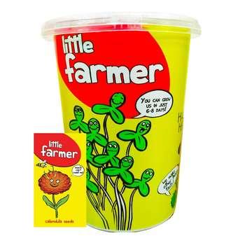 بذر  آماده برای  کشت کشاورز کوچولو مدل همیشه بهار همراه با گلدان