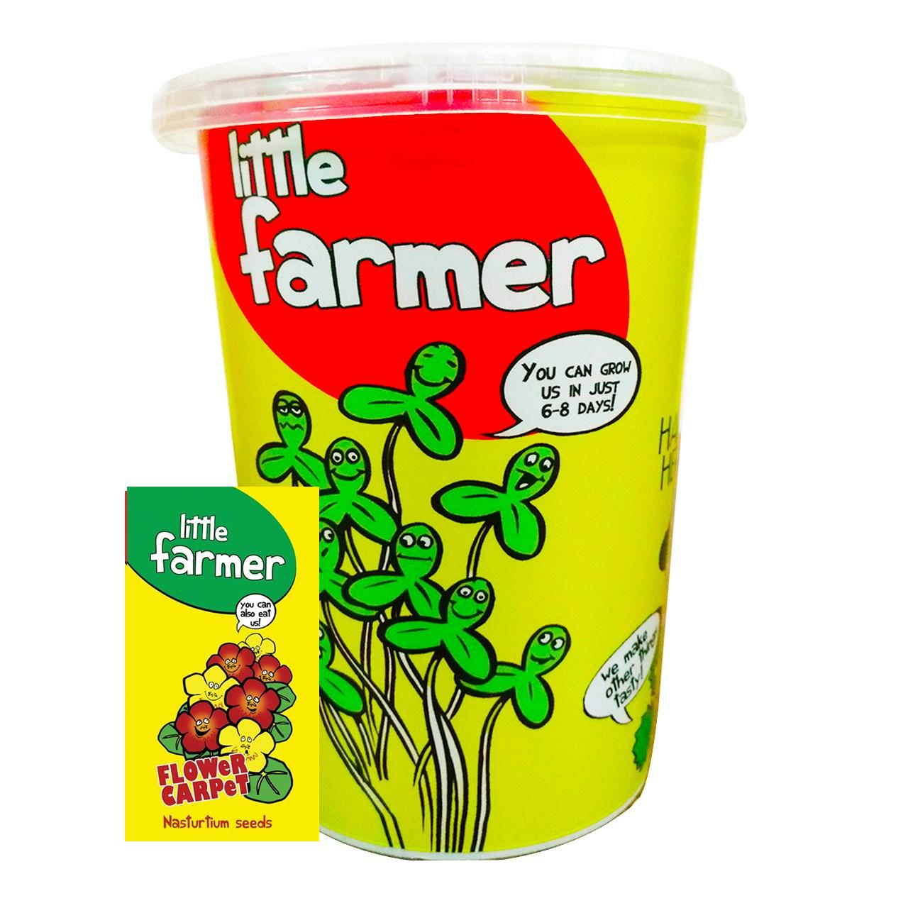بذر  آماده برای  کشت کشاورز کوچولو مدل گل لادن همراه با گلدان