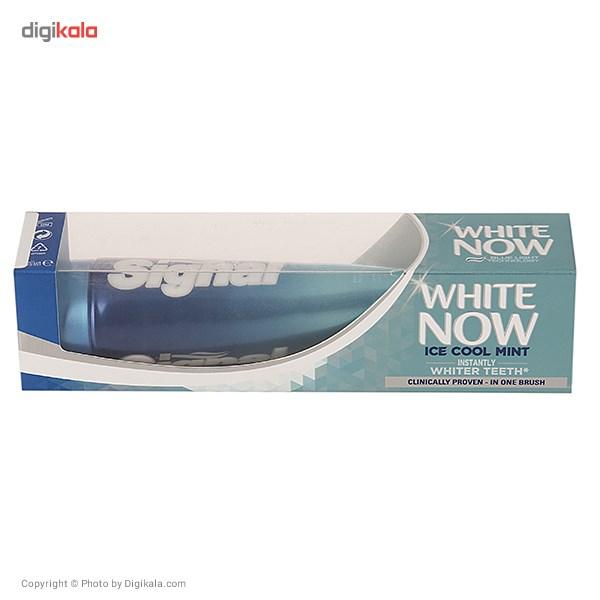 خمیر دندان سیگنال سری White Now مدل Ice Cool Mint حجم 75 میلی لیتر main 1 1