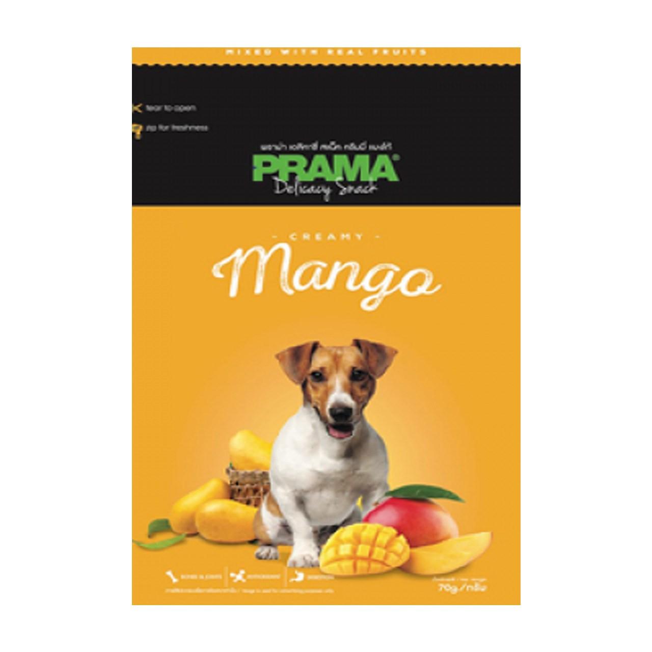 غذای خشک سگ پراما مدل تشویقی انبه
