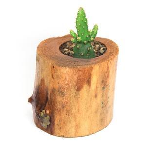 گلدان چوبی فیل چوب مدل GCH_ch