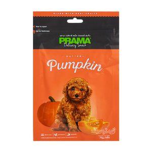 غذای خشک سگ پراما مدل تشویقی کدو تنبل