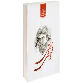 کتاب گزیده بهترین اشعار وحشی بافقی اثر رضا فهیمی