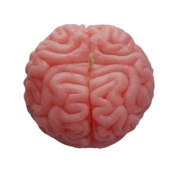 شمع مدل مغز