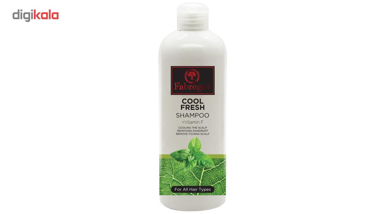 شامپو مو فابریگاس مدل Cool fresh حجم 400 میلی لیتر  Fabregas Mint Daily Hair Shampoo 400ml