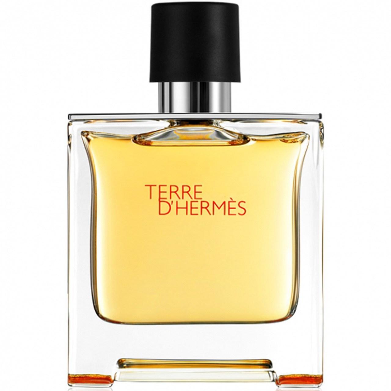 پرفیوم مردانه هرمس مدل Terre dHermes حجم 75 میلی لیتر