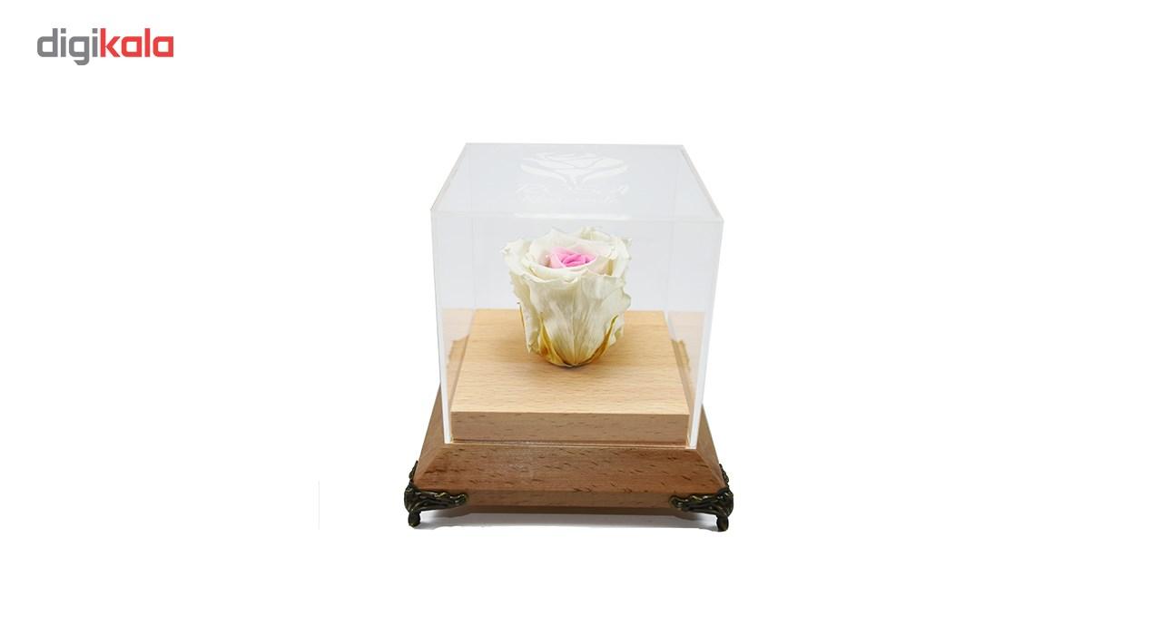 جعبه گل ماندگار رزا مدل رز جاودان سفید صورتی چوبی