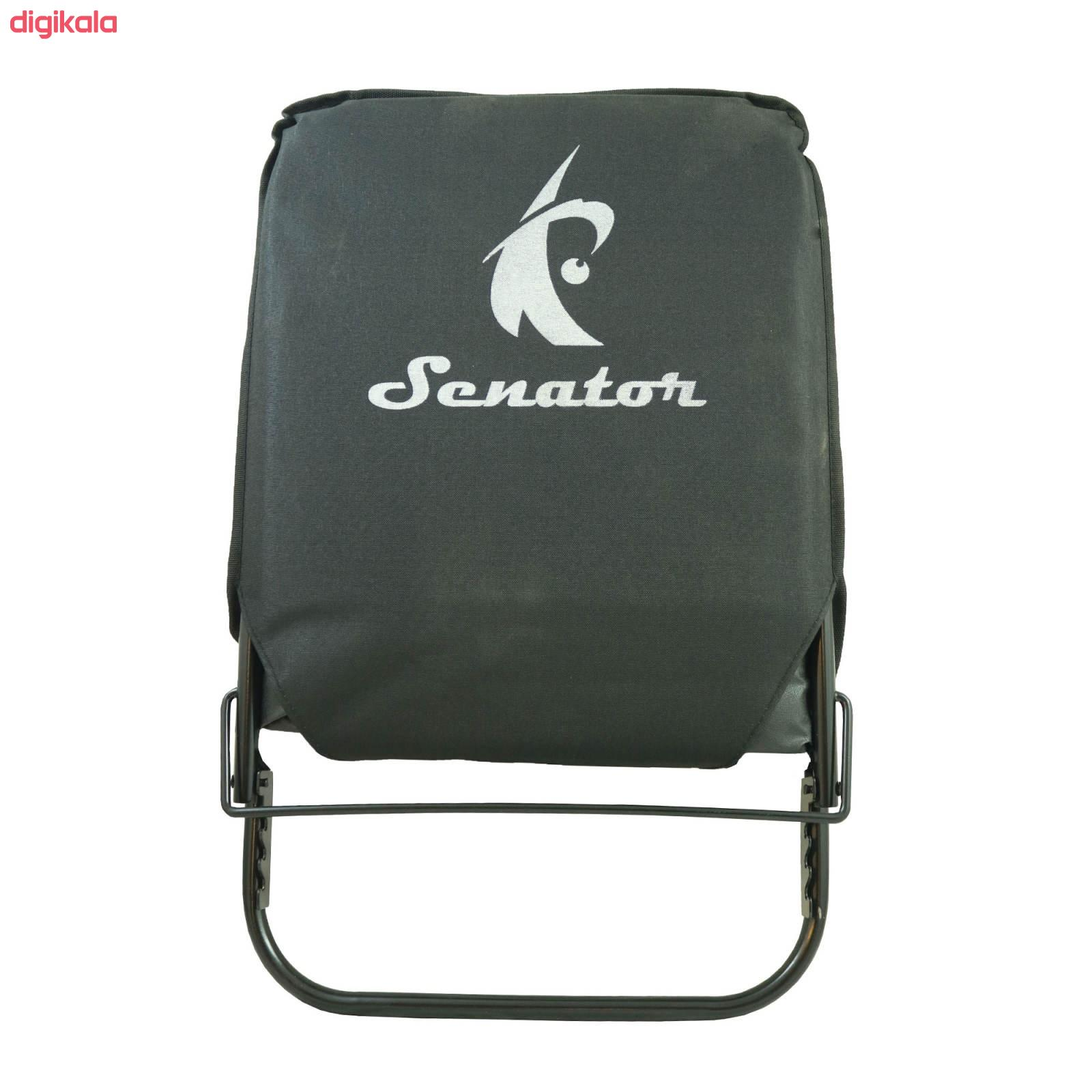 صندلی سفری سناتور کد 3M20 main 1 2