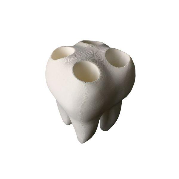 جا مسواکی مدل دندان