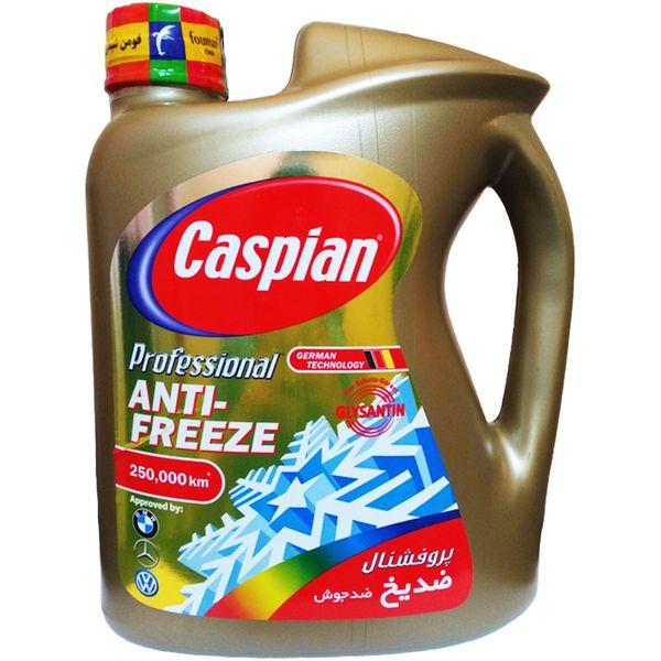 ضدیخ کاسپین مدل Professional Anti Freeze حجم 4 لیتر