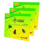 چسب مگس کُش کارتی مدل ترمینکس پک سه عددی